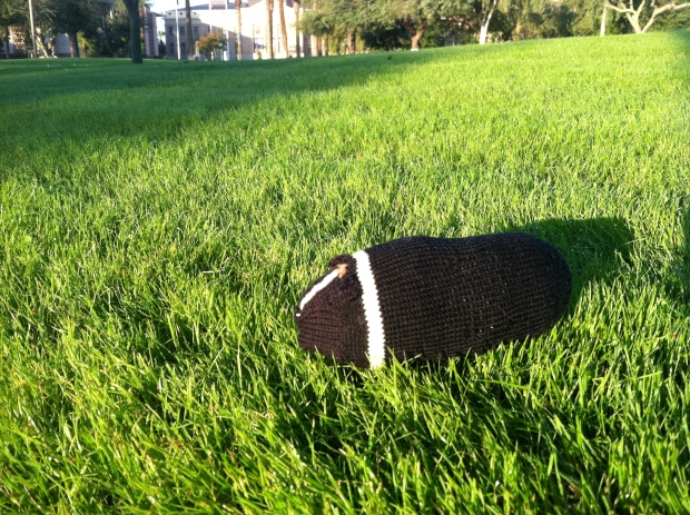 Knitted guinea pig on a lawn
