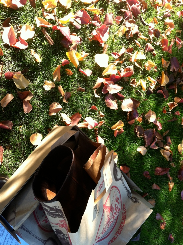Leather boots in a paper bag beside fallen leaves