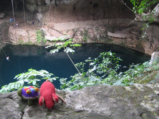 Knitted mouse and fabric frog in front of a cenote or sinkhole