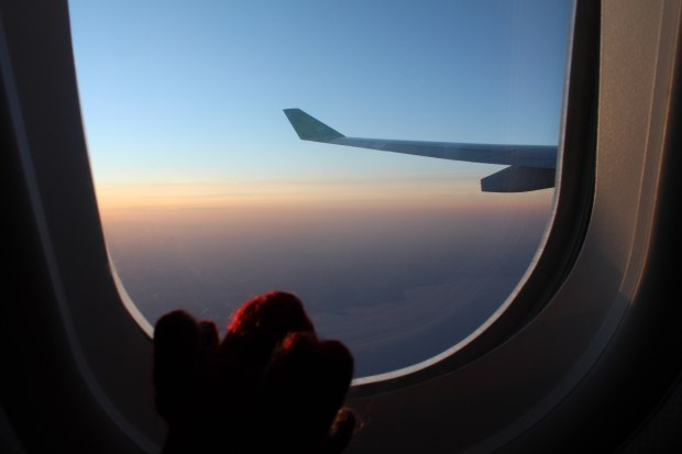 Red knitted mouse watching the sunset through the window of an Aer Lingus plane
