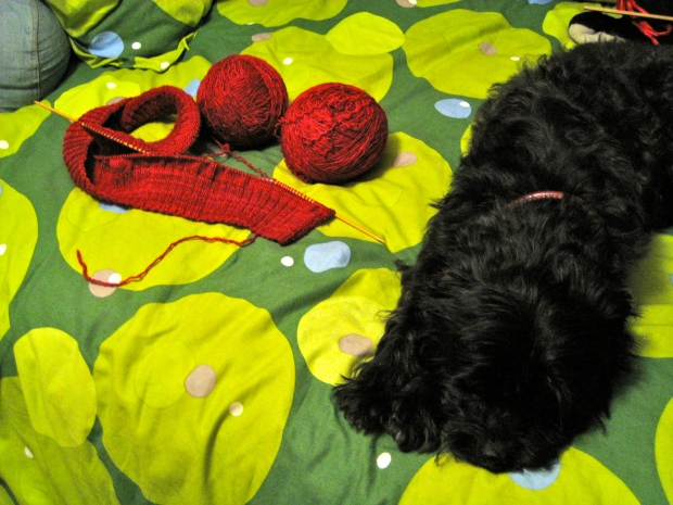 Red knitting on a bed with two balls of yarn and a black dog.