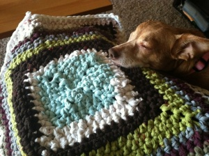 Crocheted bath mat with a small ginger dog sleeping on it.
