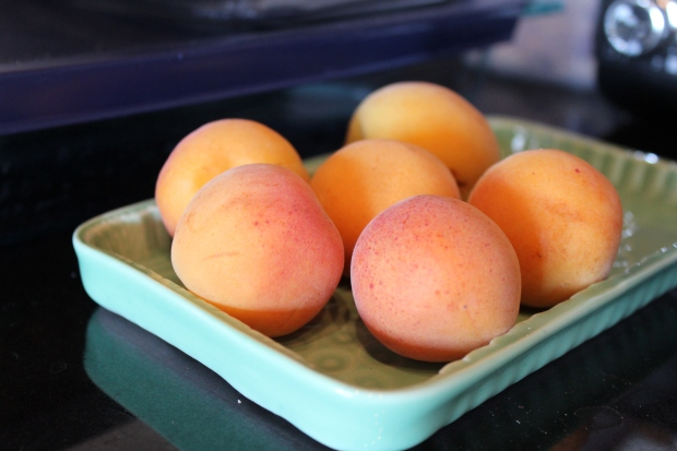 Apricots on a turqoise tray