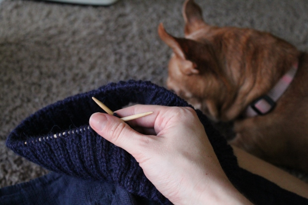 Hand holding purple ribbed knitting