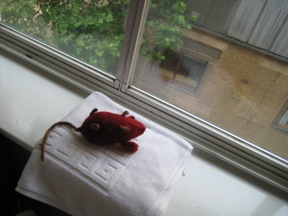 Red mouse drying on white towel