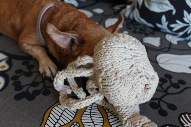 No animals were harmed in the making of this alien, but one small dog was reminded that her owner is crazy.