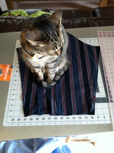 Tabby cat sitting on striped fabric