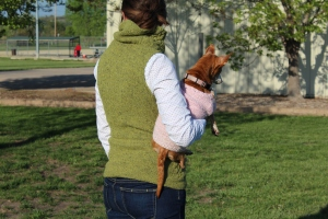 Woman in a green knitted vest holding a chiweenie in a pink sweater