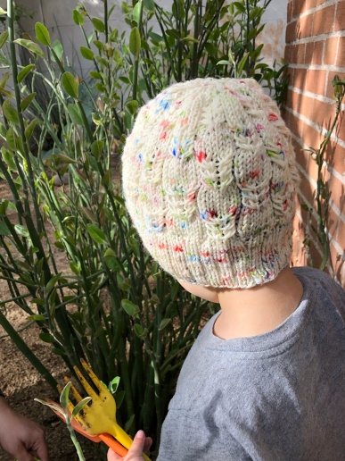 Small boy seen from behind wearing a Kryptonite hat in white speckled with green, red, and blue in front of lady slipper plants