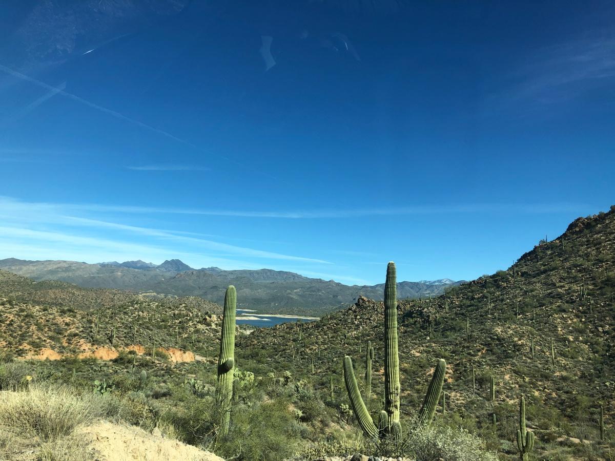 Bright blue sky above vibrant green Sonoran Desert plants, Bartlett Lake, and far away mountains